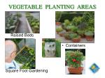 vegetable planting areas