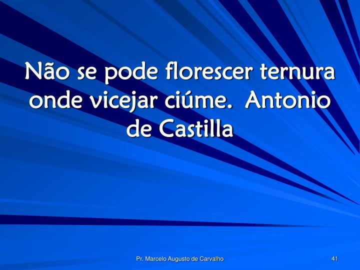 Não se pode florescer ternura onde vicejar ciúme.Antonio de Castilla