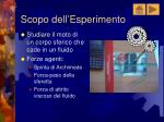 scopo dell esperimento
