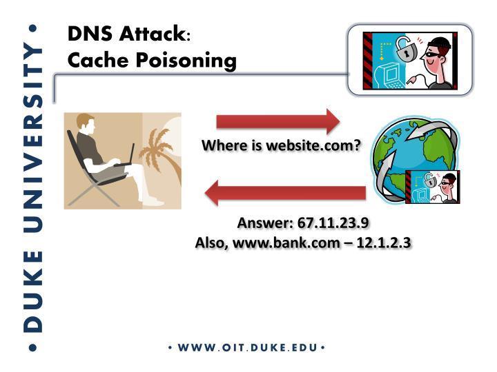 DNS Attack: