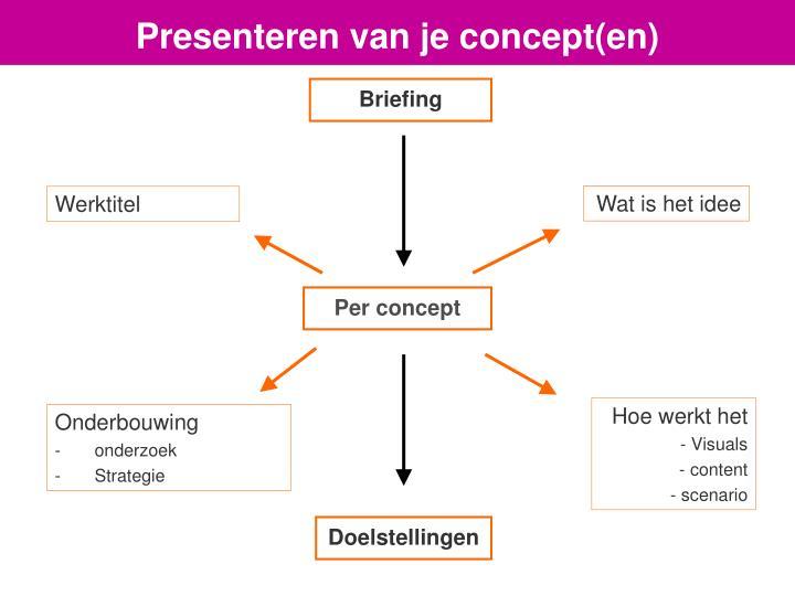 Presenteren van je concept(en)