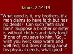 james 2 14 19