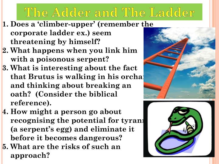 The Adder and The Ladder