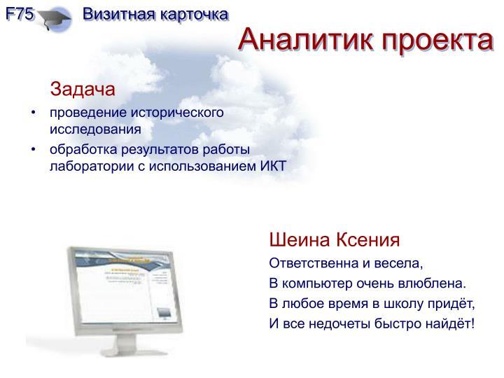Аналитик проекта