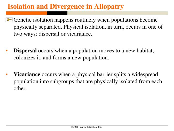 Isolation and Divergence in Allopatry