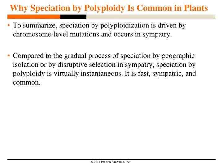 Why Speciation by Polyploidy Is Common in Plants