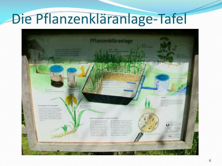Die Pflanzenkläranlage-Tafel