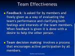team effectiveness1