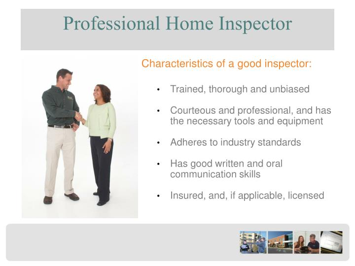 Professional Home Inspector