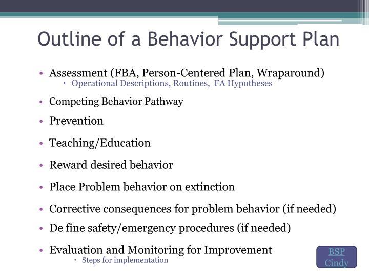 Outline of a Behavior Support Plan