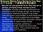 molecular motors put a spring in your step1