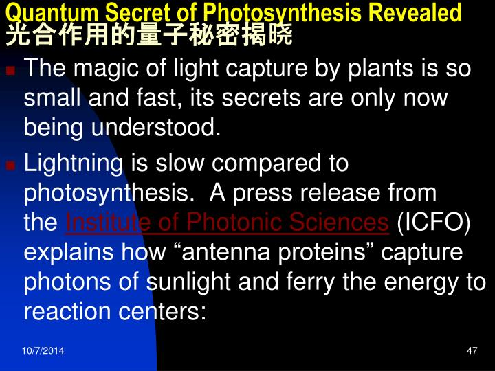 Quantum Secret of Photosynthesis Revealed