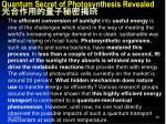 quantum secret of photosynthesis revealed1
