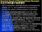 quantum secret of photosynthesis revealed3