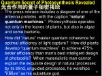 quantum secret of photosynthesis revealed4