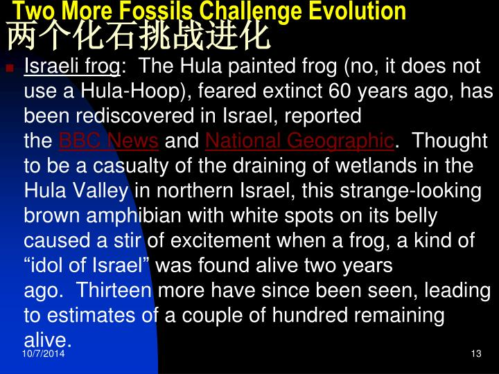 Two More Fossils Challenge Evolution