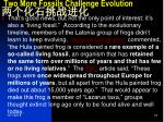 two more fossils challenge evolution2