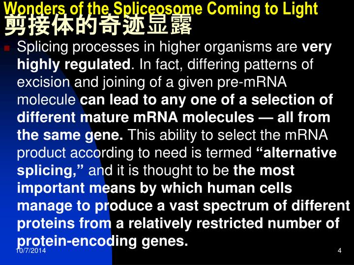 Wonders of the Spliceosome Coming to Light