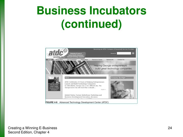 Business Incubators (continued)