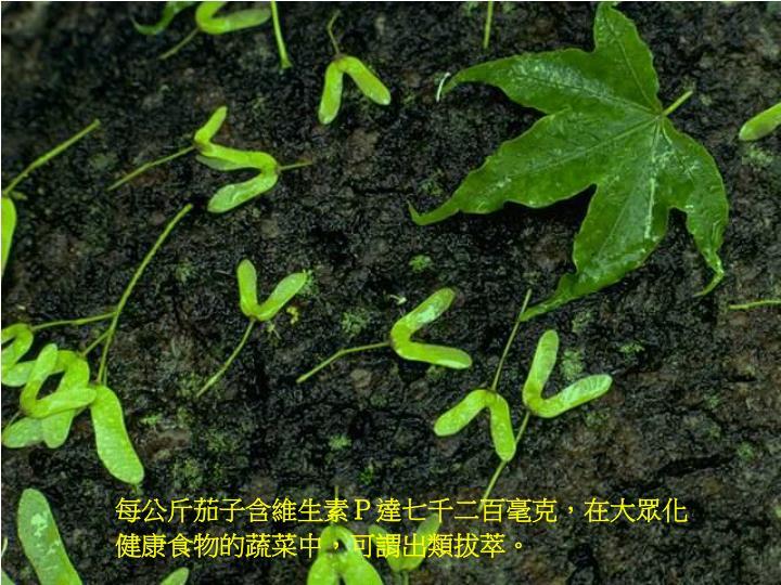 每公斤茄子含維生素P達七千二百毫克,在大眾化健康食物的蔬菜中,可謂出類拔萃。