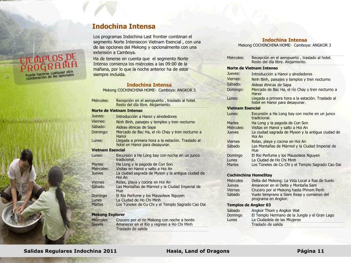 Indochina Intensa