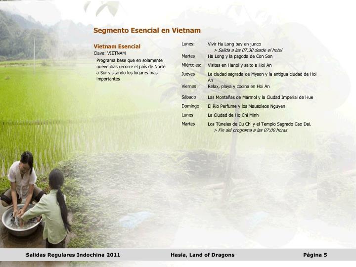 Segmento Esencial en Vietnam