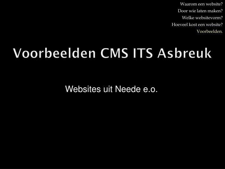 Voorbeelden CMS ITS Asbreuk