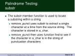 palindrome testing substr