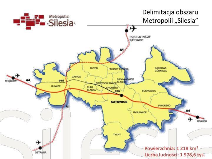 Delimitacja obszaru