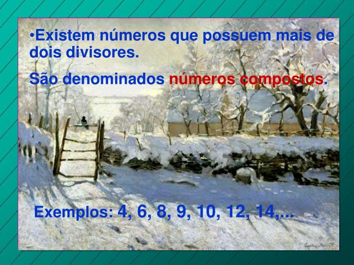 Existem números que possuem mais de dois divisores.