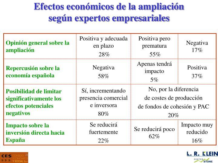 Efectos económicos de la ampliación
