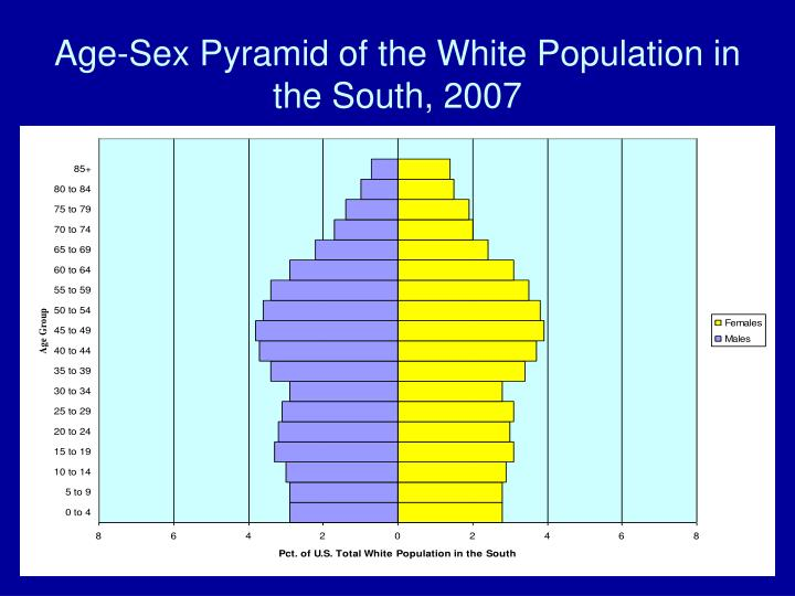 Age-Sex Pyramid of the White Population in the South, 2007