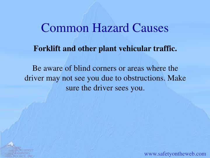 Common Hazard Causes