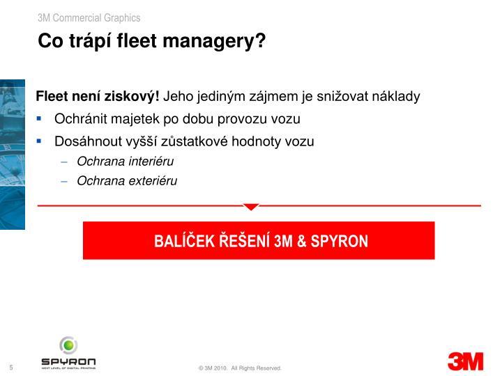 Co trápí fleet managery?