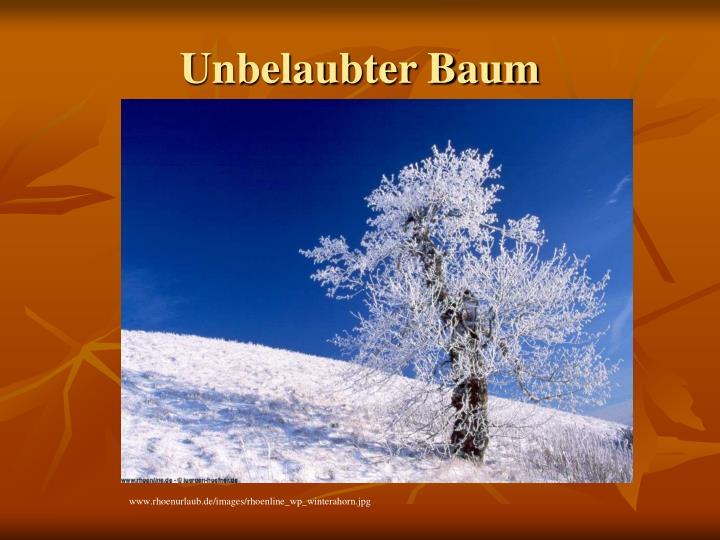 Unbelaubter Baum