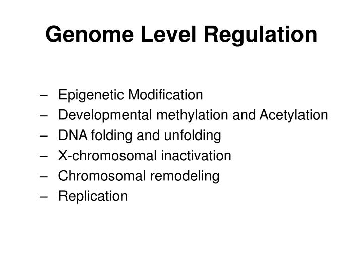 Genome Level Regulation