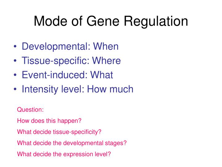 Mode of Gene Regulation