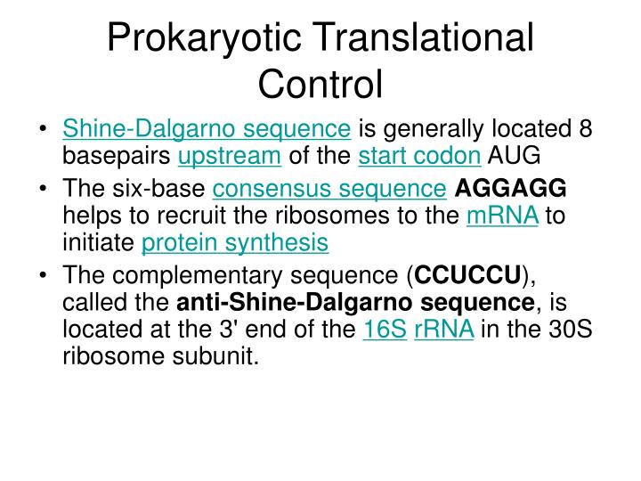 Prokaryotic Translational Control