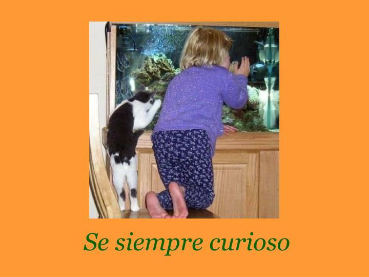 Se siempre curioso