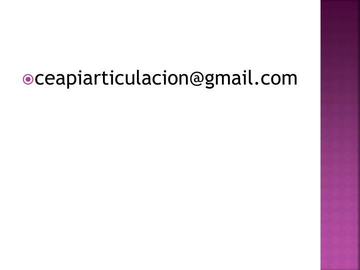 ceapiarticulacion@gmail.com