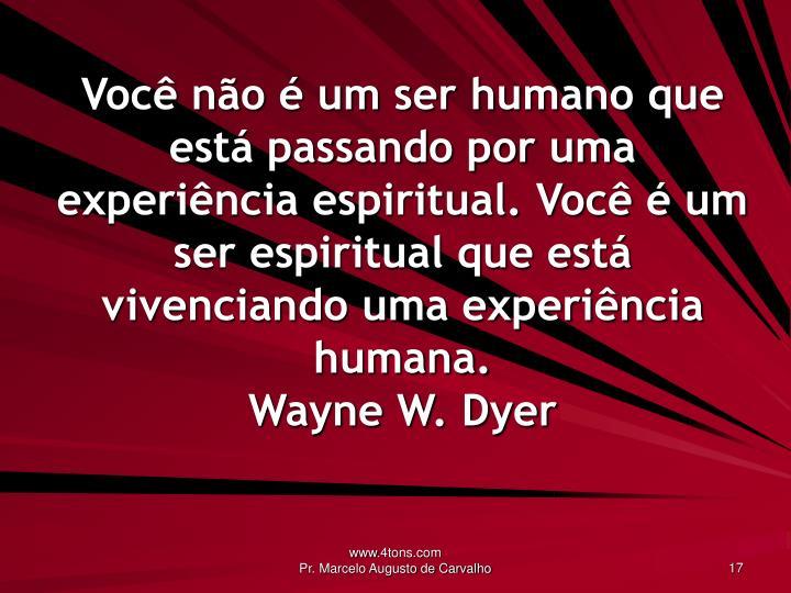 Você não é um ser humano que está passando por uma experiência espiritual. Você é um ser espiritual que está vivenciando uma experiência humana.
