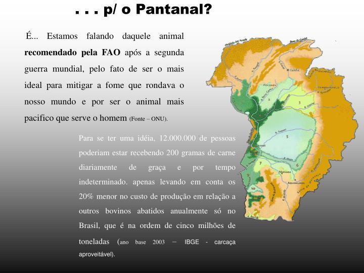 . . . p/ o Pantanal?