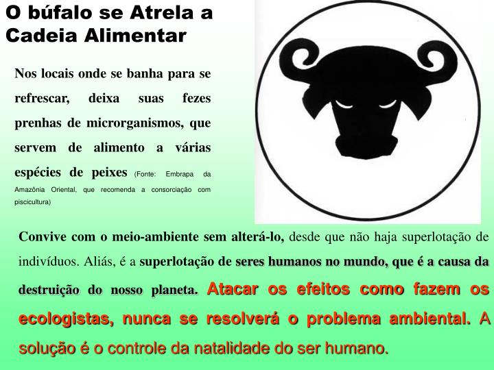 O búfalo se Atrela a Cadeia Alimentar