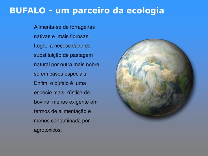BUFALO - um parceiro da ecologia