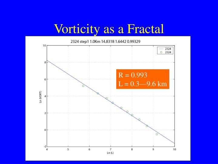Vorticity as a Fractal