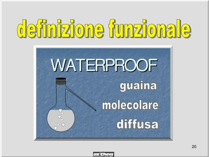 definizione funzionale