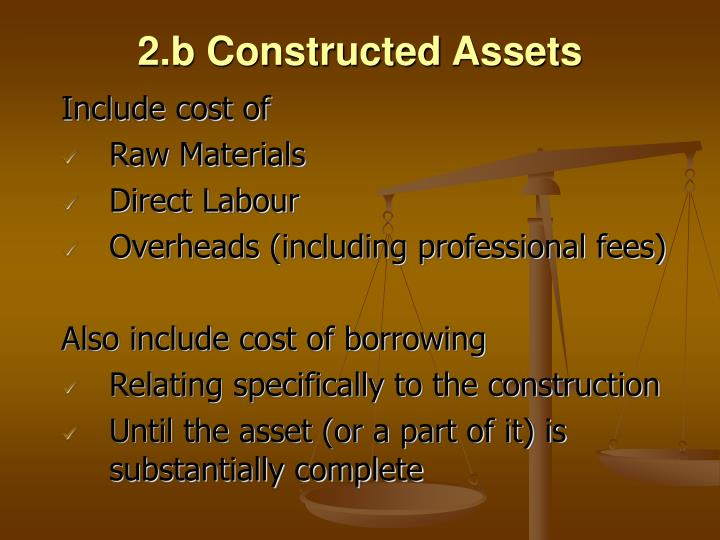2.b Constructed Assets