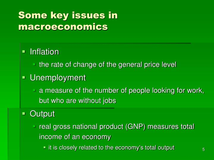 Some key issues in macroeconomics