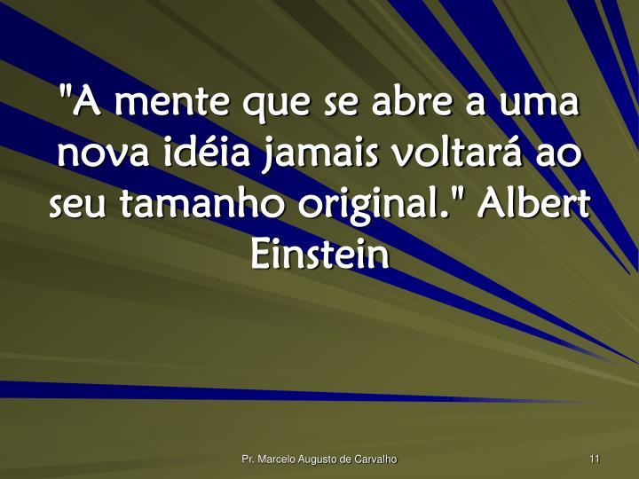 """""""A mente que se abre a uma nova idéia jamais voltará ao seu tamanho original."""" Albert Einstein"""