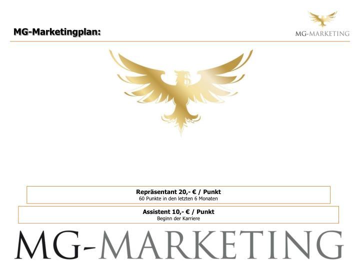 MG-Marketingplan:
